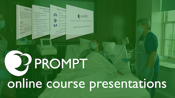 PROMPT online course presentations